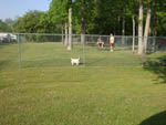 View larger image of Dog exercise area at OAK PLANTATION CAMPGROUND image #12
