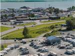 View larger image of Bald Eagle at EAGLES REST RV PARK  CABINS image #3
