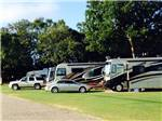 View larger image of RVs parked in a row at DOTHAN CHERRY BLOSSOM RV PARK image #5