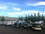 View larger image of RVs and trailers at campgrounds at DOUBLE DICE RV PARK image #1