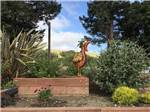 View larger image of Statue of a rooster in a garden at BETABEL RV PARK image #5