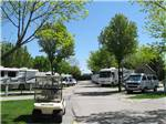 View larger image of RVs and trailers camping at MOUNTAIN VIEW RV PARK image #2