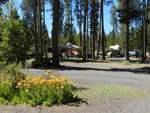 View larger image of BIG PINES RV PARK at CRESCENT OR image #5