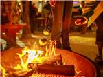 View larger image of Orange colored fall leaved trees beside RVs at RIVER PLANTATION RV RESORT image #5