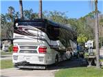 View larger image of TROPICAL PALMS RV RESORT at KISSIMMEE FL image #3