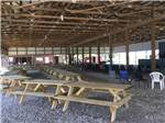 View larger image of Patio area with picnic tables at DADS BLUEGRASS CAMPGROUND image #3