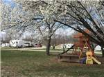 View larger image of Playground at DADS BLUEGRASS CAMPGROUND image #4