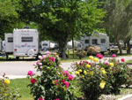 View larger image of Trailers camping at VISALIA SEQUOIA NATIONAL PARK KOA image #1