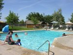 View larger image of People swimming in the pool at VISALIA SEQUOIA NATIONAL PARK KOA image #3