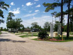 View larger image of Gravel road leading into RV park at PINE CREST RV PARK OF NEW ORLEANS image #11