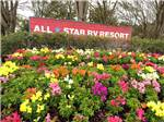 View larger image of Flowers at ALLSTAR RV RESORT image #1