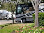 View larger image of Trailers and RVs camping at ALLSTAR RV RESORT image #2