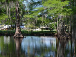 View larger image of Trailers camping on the water at BAYOU WILDERNESS RV RESORT image #4