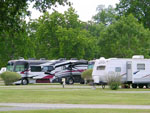 View larger image of RVs and trailers at campground at BAYOU WILDERNESS RV RESORT image #6