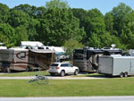 View larger image of Farming decor in grassy area in front of RVs at BAYOU WILDERNESS RV RESORT image #8