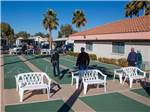 View larger image of FIESTA GRANDE RV RESORT at CASA GRANDE AZ image #2