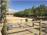 View larger image of Dog exercise area at BOULDER CREEK RV RESORT image #6
