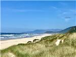 View larger image of Aerial view of the RV park and bay at TILLAMOOK BAY CITY RV PARK image #3