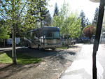 View larger image of Large RVs parked along road at PIONEER RV PARK image #5