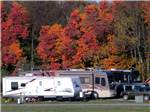 View larger image of Beautiful fall foliage behind some RVs at SCENIC HILLS RV PARK image #6