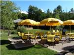 View larger image of The cafe area with covered sitting at PETOSKEY KOA image #6
