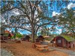 View larger image of Paved path to rustic cabins at ANGELS CAMP RV  CAMPING RESORT image #2