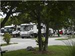 View larger image of COTTONWOODS RV PARK at COLUMBIA MO image #3