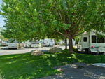 View larger image of Treed grassy RV site with rig at VICTORIAN RV PARK image #5