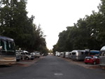 View larger image of Road leading into campgrounds at HERITAGE RV PARK image #4