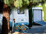 View larger image of RV and trailer at campground at CAL EXPO RV PARK image #4