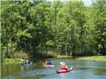 View larger image of People kayaking at CAJUN COAST VISITORS  CONVENTION BUREAU image #3