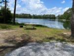Lake Harmony RV Park and Campground