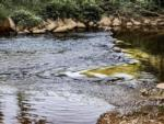 View larger image of Class C motorhome parked with chairs next to it at CREEKSIDE RV PARK image #9