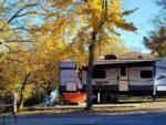 View larger image of Ladies relaxing in their site watching the dogs at CREEKSIDE RV PARK image #10