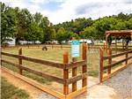 View larger image of Dog exercise area at BIG MEADOW FAMILY CAMPGROUND image #12