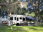 View larger image of A travel trailer parked under a tree at CAMP MACK A GUY HARVEY LODGE MARINA  RV RESORT image #1