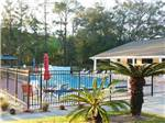 View larger image of A view of the fenced in pool at BLUE PARROT RV RESORT image #6