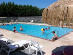 View larger image of People enjoying the swimming pool at TWIN OAKS RV PARK image #4