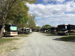 View larger image of Gravel road and sites with big rigs at TWIN OAKS RV PARK image #6