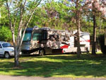 View larger image of RV camping at YOUNGS LAKESHORE RV RESORT image #4