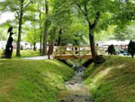 View larger image of A view of the creek with trees at CREEKWOOD FARM RV PARK image #5