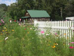 View larger image of Flowered landscaping in the foreground of a rental cabin  at CREEKWOOD FARM RV PARK image #9