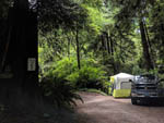 View larger image of Tent camping at EMERALD FOREST CABINS  RV image #6