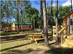 View larger image of Cabins with decks at YOGI BEAR JELLYSTONE CAMP RESORTS image #5