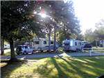 View larger image of RVs and trailers at campground at PELICAN PALMS RV PARK image #5