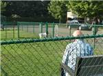 View larger image of Man and dog in the grass dog park at RISING RIVER RV PARK image #8