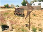 View larger image of Dog park with rusty antique tractor at SANTA FE SKIES RV PARK image #3