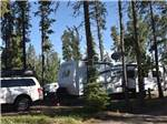 View larger image of Trailer camping at CAMP TAMARACK RV PARK image #5