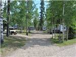 View larger image of Gravel road leading into RV park at CAMP TAMARACK RV PARK image #7