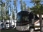 View larger image of RV camping at CAMP TAMARACK RV PARK image #9
